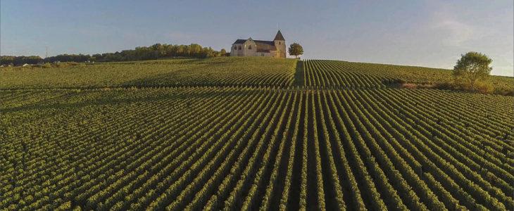 region viticole de champagne